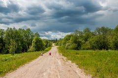 Estrada de terra rústica Imagem de Stock Royalty Free