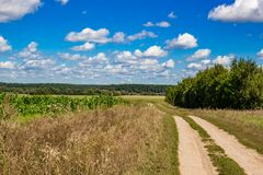Estrada de terra rural ao longo dos campos agrícolas imagens de stock