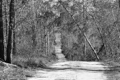 Estrada de terra velha imagens de stock