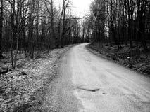 Estrada de terra velha nas madeiras Foto de Stock Royalty Free