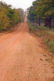Estrada de terra vermelha foto de stock