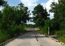 Estrada de Texas através da cama de angra Foto de Stock