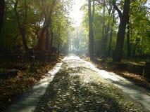 Estrada de um cemitério do lutheran Fotos de Stock Royalty Free