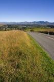 Estrada de Waiau Imagens de Stock