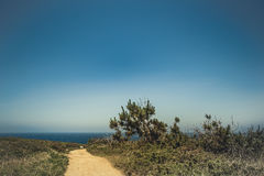 Estrada de Yelloy à costa do oceano Imagem de Stock