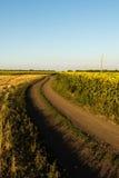 Estrada do campo através dos campos Imagens de Stock Royalty Free