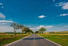 Estrada do campo do verão Foto de Stock Royalty Free