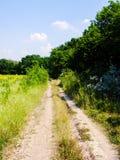 Estrada do campo do verão Imagens de Stock Royalty Free