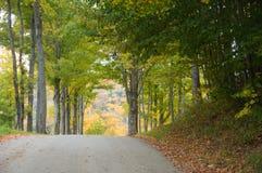 Estrada do cascalho através das madeiras do outono foto de stock royalty free