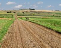 Estrada do cascalho da pradaria através dos campos. foto de stock