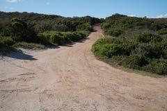 Estrada do cascalho do enrolamento cercada pelo bosque Fotografia de Stock Royalty Free