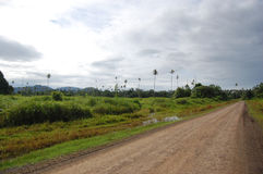 Estrada do cascalho nas selvas Papuá-Nova Guiné Fotografia de Stock
