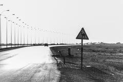 Estrada do deserto do sinal de aviso do camelo no salalah dhofar Omã Médio Oriente 6 Imagens de Stock