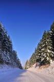 Estrada do inverno Fotografia de Stock