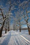 Estrada do inverno Fotos de Stock