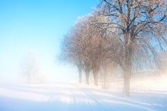 Estrada do inverno. Fotografia de Stock