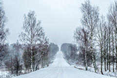 Estrada do inverno Foto de Stock