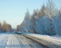 Estrada do inverno. Imagens de Stock Royalty Free