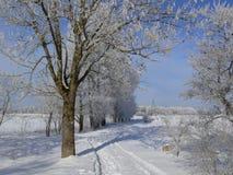 Estrada do inverno. Fotografia de Stock Royalty Free