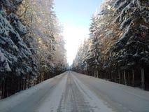 A estrada do inverno Imagens de Stock Royalty Free