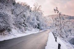 Estrada do inverno após a queda de neve Fotografia de Stock Royalty Free