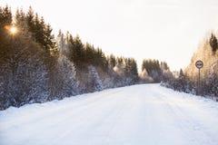 Estrada do inverno através da floresta Imagens de Stock Royalty Free