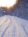 Estrada do inverno através da floresta fotografia de stock royalty free