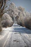 Estrada do inverno com árvores geadas e rime Foto de Stock Royalty Free