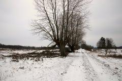 Estrada do inverno com a neve tão fria fotos de stock