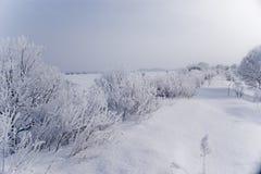 Estrada do inverno completamente da neve Foto de Stock Royalty Free