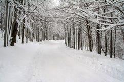 Estrada do inverno de Offrod Imagem de Stock Royalty Free