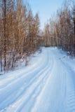 Estrada do inverno na floresta foto de stock