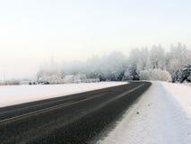 Estrada do inverno na névoa da manhã fotos de stock royalty free