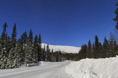 Estrada do inverno na noite Imagens de Stock Royalty Free