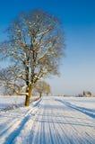 Estrada do inverno no campo Imagens de Stock