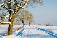 Estrada do inverno no campo Foto de Stock