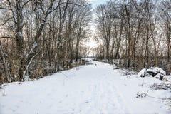 Estrada do inverno sobre a ponte Fotos de Stock