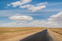 Estrada do Mongolian foto de stock royalty free