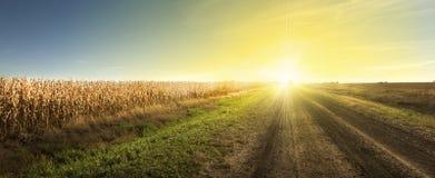 Estrada do nascer do sol foto de stock