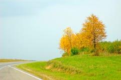 Estrada do outono Imagem de Stock Royalty Free