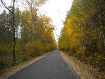 A estrada do outono entra na distância ao horizonte foto de stock royalty free