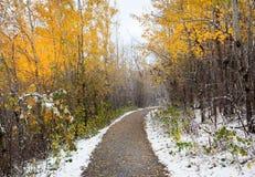 Estrada do outono do inverno fotografia de stock royalty free