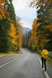 Estrada do outono nas montanhas Fotos de Stock Royalty Free