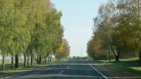 Estrada do outono para a condução de carros entre as árvores em Bielorrússia video estoque