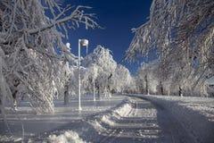 Estrada do país das maravilhas do inverno - Niagara Falls fotos de stock