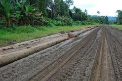 Estrada do transporte no interior de Papuá-Nova Guiné Fotos de Stock