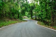 Estrada do viajante à montanha Imagem de Stock Royalty Free