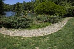 Estrada e árvores pavimentadas pedra pelo lago foto de stock