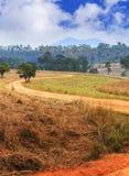 Estrada e árvores rurais da curva de S em Tung Salang Luang National Fores Fotografia de Stock Royalty Free