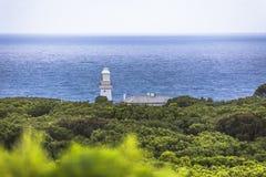 Estrada e arredores do oceano de Otway Lightstation Melbourne Austrália do cabo grande Imagens de Stock Royalty Free
